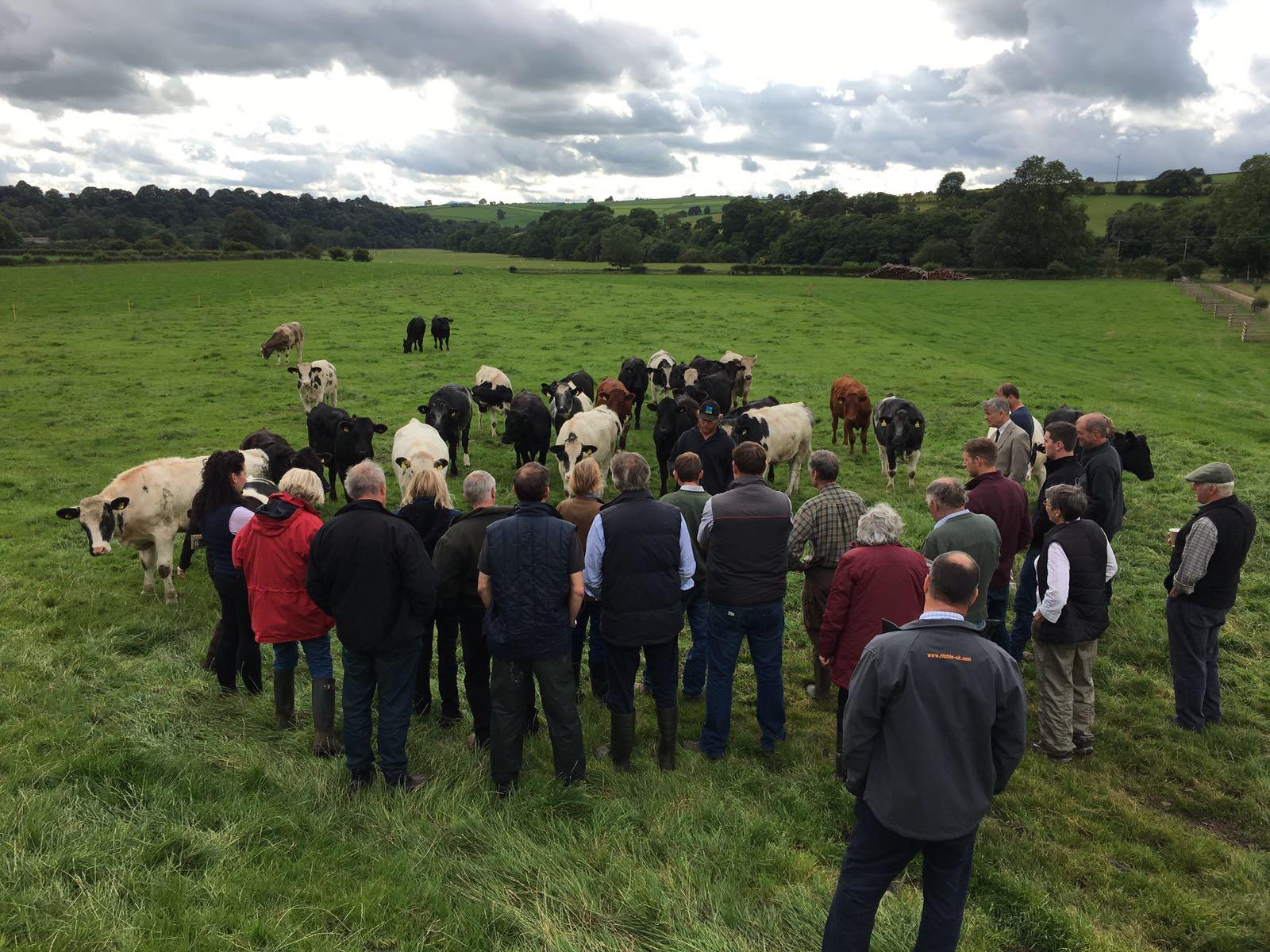 Farm trials in Croglin, Cumbria