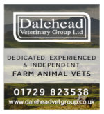 Dalehead Veterinary Group Ltd