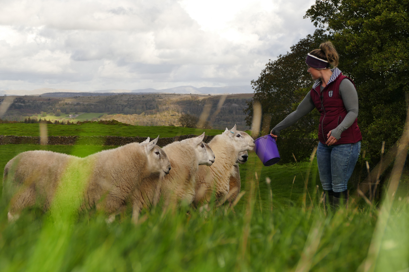 Jodie Swan Cartmel Sheep Farmer